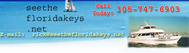 Florida Keys Fishing Charters Florida Keys Backcountry Guides Islamorada Fishing Charter